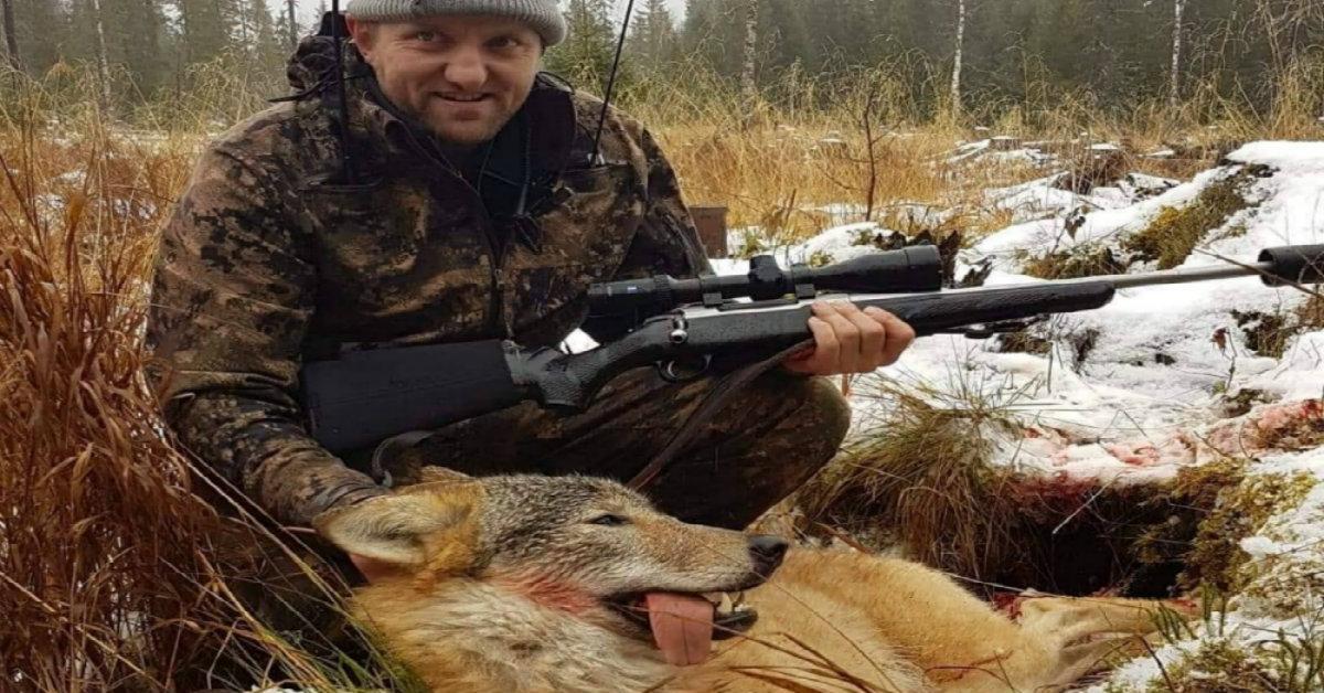 Odd Arne Ås – Slik foregår ulvejakta