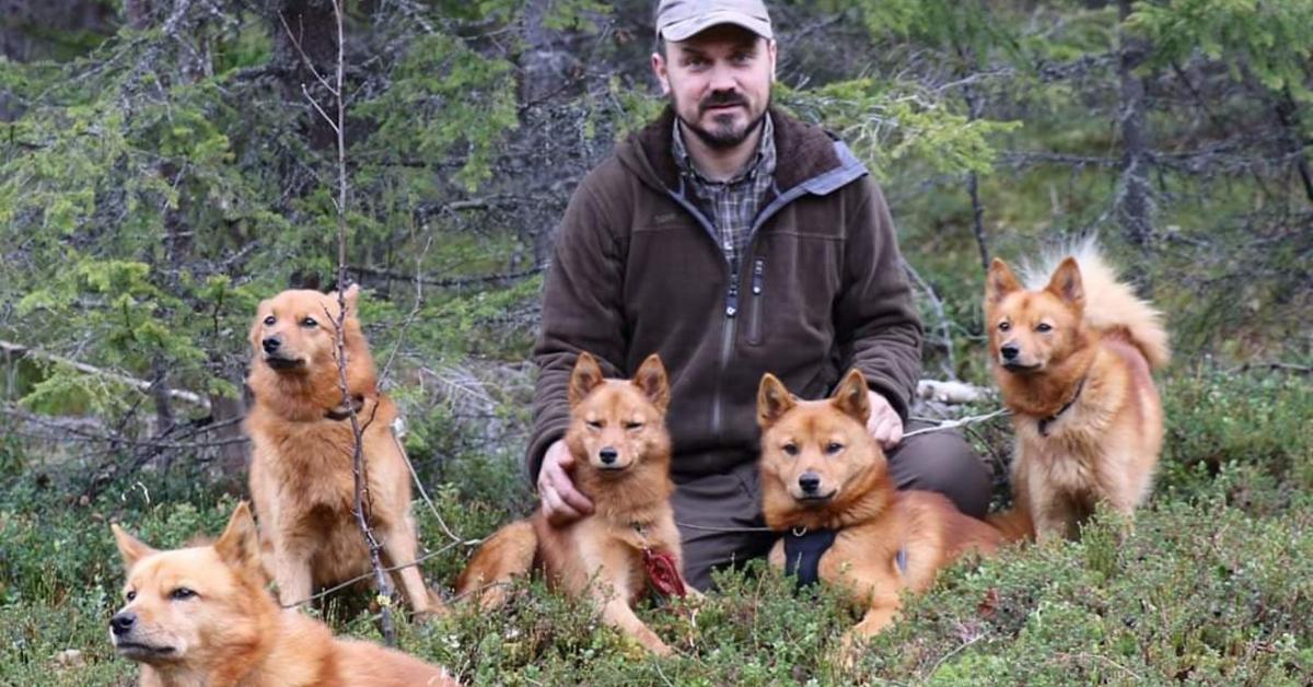 Skogsfugljakt med treskjeller – Kent Støkket